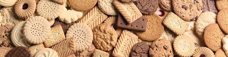 Biscuit Case Study